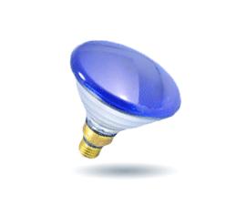Incandescent Par Lamp